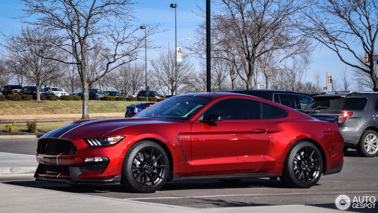 ford mustang shelby gt 350 2017 1 january 2017 autogespot. Black Bedroom Furniture Sets. Home Design Ideas