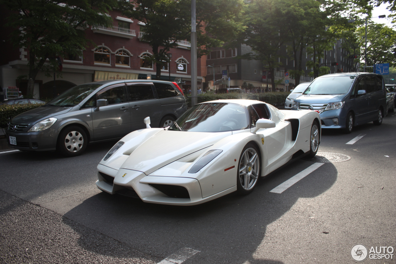 ferrari enzo ferrari - Ferrari Enzo 2013 White