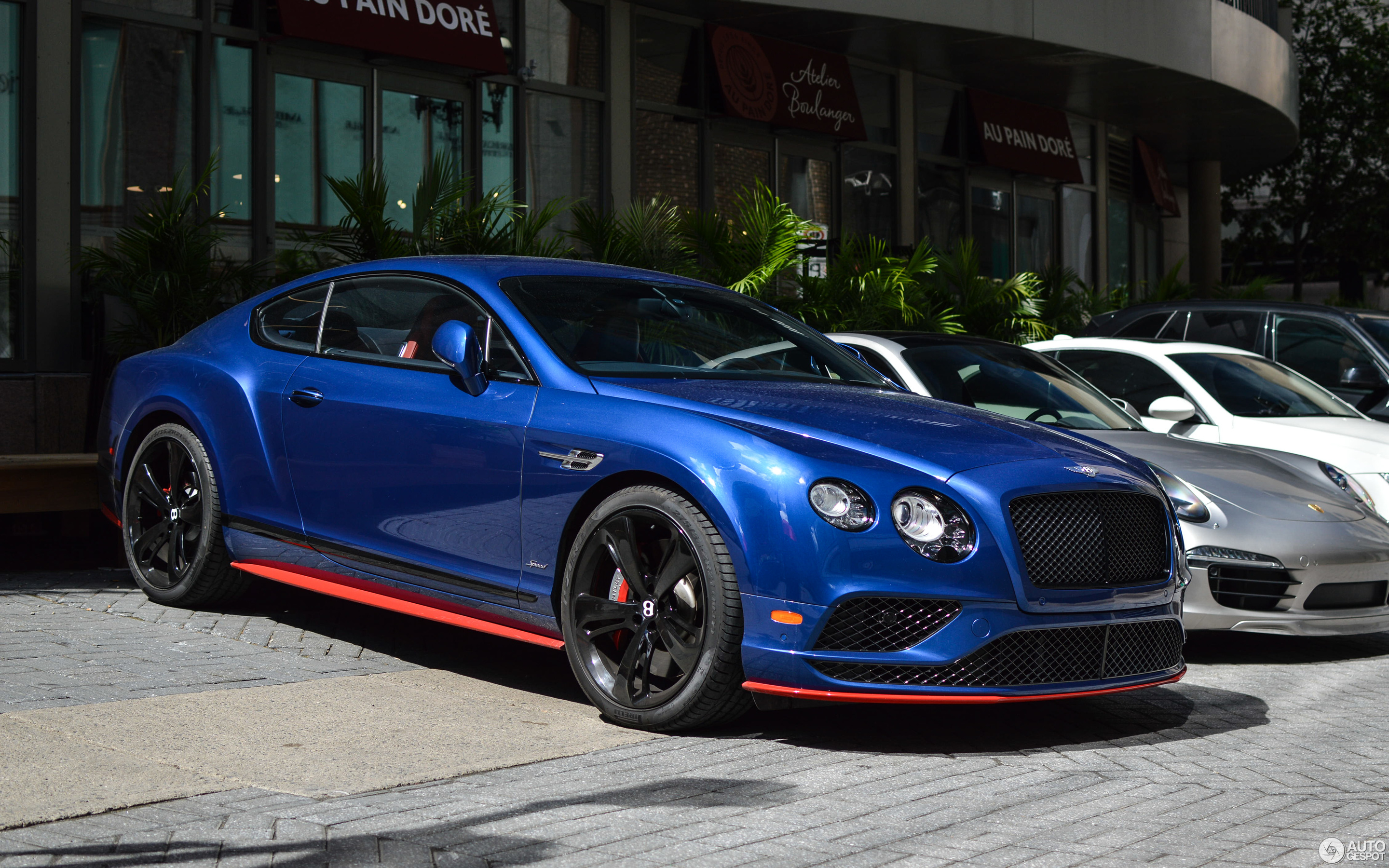 cars continental speed gt bentley top new for sale