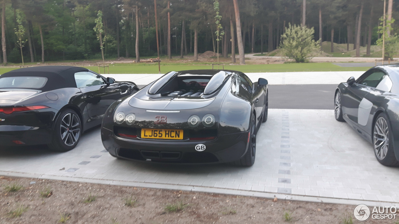 bugatti veyron 16 4 grand sport vitesse 20 june 2017 autogespot. Black Bedroom Furniture Sets. Home Design Ideas