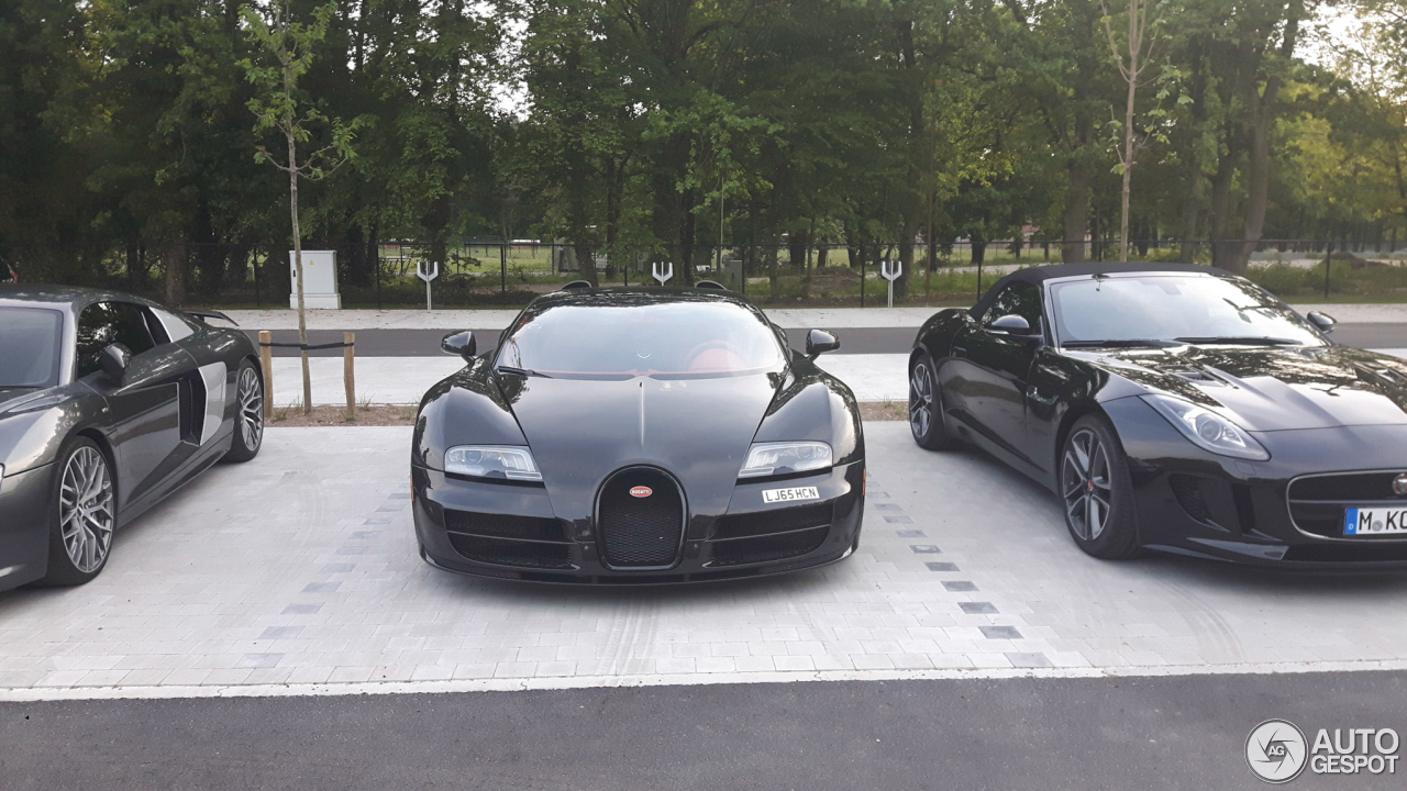 bugatti veyron 16 4 grand sport vitesse 20 juni 2017 autogespot. Black Bedroom Furniture Sets. Home Design Ideas