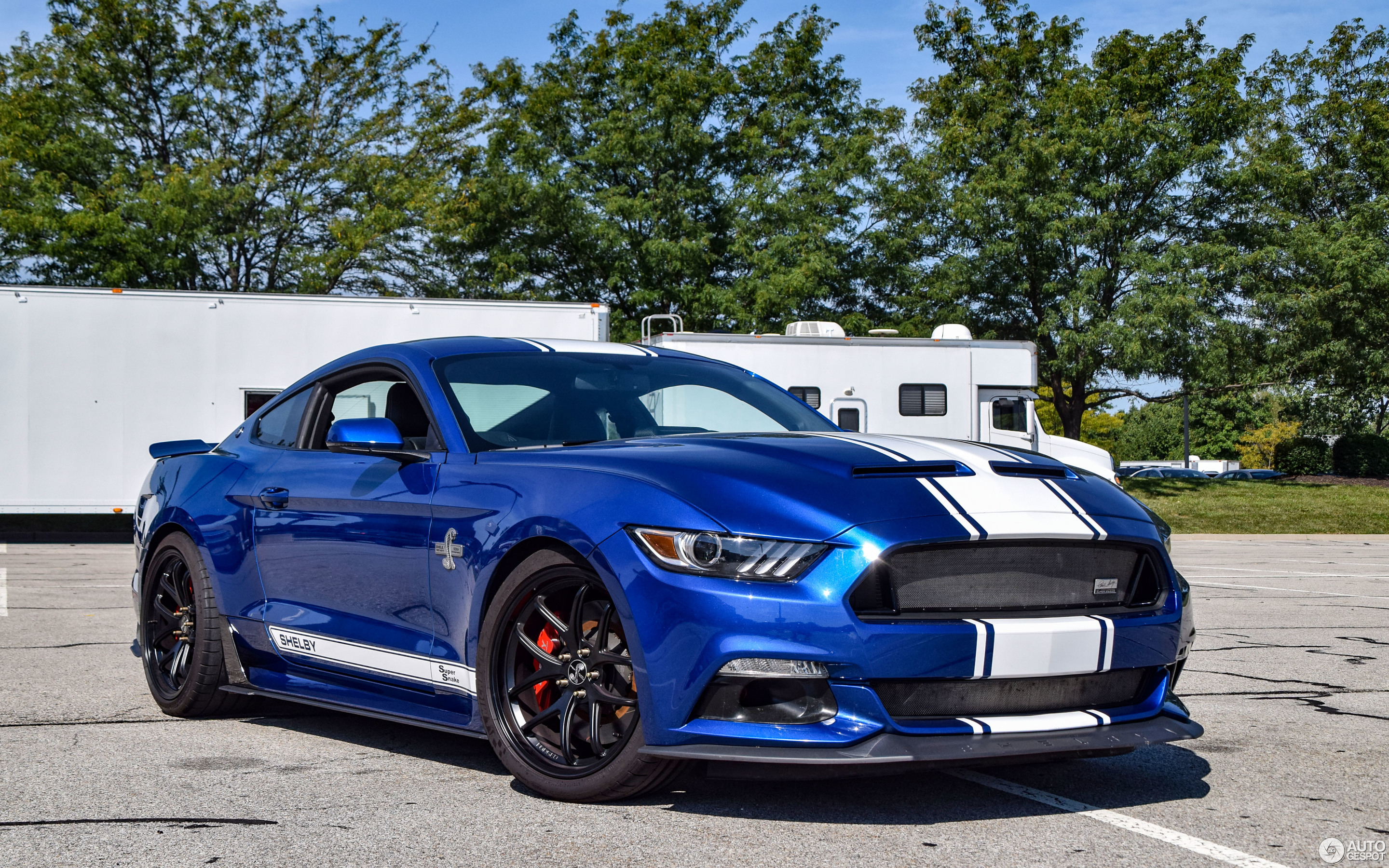 Ford Mustang Shelby Super Snake 2017 50th Anniversary