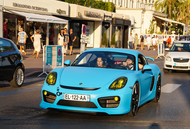 Porsche Techart Cayman S 2013